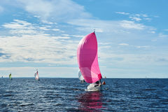 Yacht with pink spinnaker Royalty Free Stock Images