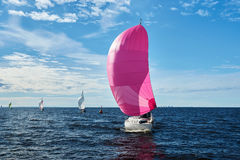 Yacht with pink spinnaker Royalty Free Stock Photo