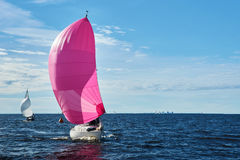 Yacht with pink spinnaker Stock Photography