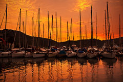 Yacht port over orange sunset Royalty Free Stock Image