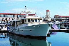 Yacht in the port. Yacht standing in port of Sochi, Russia Stock Photography