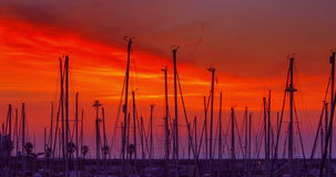 Yacht port at sunrise. Timelapse of yacht marina. Red sky over yacht harbour. At morning. Clouds sky. Row of sail masts. Yachts in port at sun rise. Masts stock video