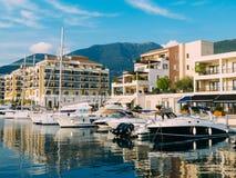 Yacht Porto Monténégro Région d'élite de Tivat Photographie stock libre de droits