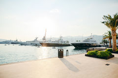 Yacht Porto Montenegro Elitområde av Tivat Royaltyfria Bilder
