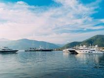Yacht Porto Montenegro Elitområde av Tivat Arkivbilder