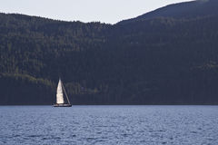 Yacht on Puget Sound Royalty Free Stock Image