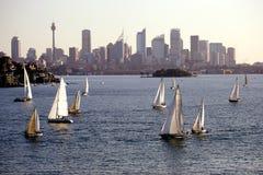 Yacht Regatta. At Sydney Harbor, Australia Stock Image