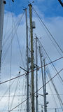 Yacht rigging and masts Royalty Free Stock Image