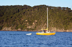 Yacht sail in the Bay of Islands New Zealand Stock Photo