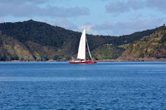 Yacht sail in the Bay of Islands New Zealand Royalty Free Stock Photo
