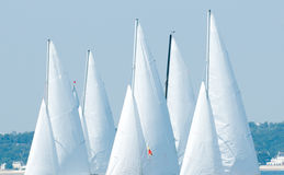Yacht sail in regatta. Detail of multitude yacht sailing  in regatta Stock Image