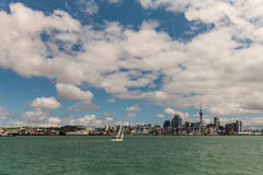 Yacht sailing in Auckland harbour Royalty Free Stock Images