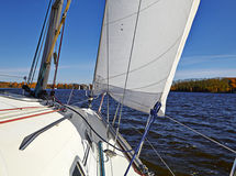 Yacht sailing on the lake Royalty Free Stock Photo