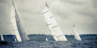 Yacht sailing  in storm. Group yacht sailing  in storm with waves Royalty Free Stock Photography