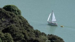Yacht sails along New Zealand stock footage