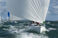 Yacht som är tävlings- i dyningen Arkivfoton