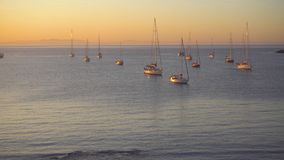 Yacht at sunrise in ocean bay. Magical seascape stock video