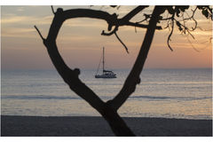 Yacht at sunset in the doorway of the tree. A trip on a yacht,yacht at sunset in the doorway of the tree Stock Photo