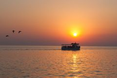 Yacht with tourists at sunset with birds flying away royalty free stock image