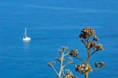 Yacht und Anlage Lizenzfreies Stockfoto