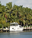 Yacht vicino a fogliame fertile fotografia stock libera da diritti