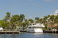 Yacht in water and palm trees. Luxury yacht in New River canal, Fort Lauderdale, Florida with docks and palm trees Stock Photo