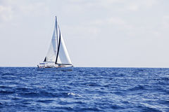 Yacht with white sails Stock Image