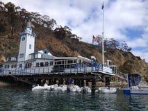 Yachtclub von Catalina-Insel Stockfotos