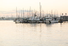 Yachten und Boote in der Ventura-Hafendämmerung Stockfoto