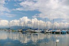 Yachten, Wolken und ein Schwan stockfoto