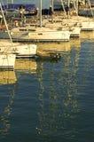 Yachter och reflexioner i hamn på solnedgången royaltyfria bilder