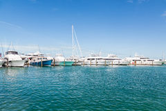 Yachter på blått i Key West Royaltyfri Bild