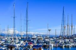 Yachthamn i Monaco Arkivfoto