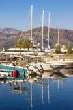 Yachtjachthafen in Adria Montenegro, Bucht von Kotor, Tivat-Stadt Ansicht von Porto Montenegro am sonnigen Wintertag lizenzfreie stockfotos