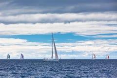 Yachtregatta på Adriatiskt havet i blåsväder royaltyfri bild