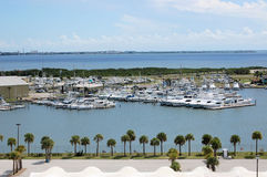 Yachts Marina Florida Palm Trees Tropical Stock Images