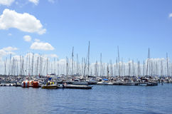 Yachts. royalty free stock images