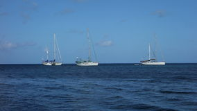 Yachts at anchor in the tropics stock video