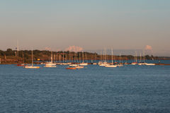 Yachts anchored in Helsinki Stock Images