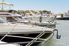 Yachts anchored in a marina Stock Images
