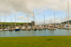 Yachts anchored in the marina, Gulf Harbour, Auckland, New Zealand Stock Photos