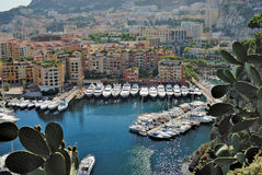 Yachts and apartments in port Monte Carlo. Yachts and apartments in port Fontvieille in Monte Carlo Royalty Free Stock Images