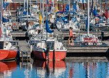 Yachts au club de navigation de Nepean photographie stock libre de droits