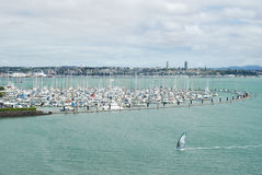 Yachts in Auckland, New Zealand Royalty Free Stock Images