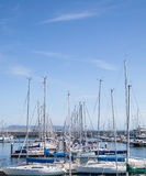Yachts berthed at the marina. Royalty Free Stock Images