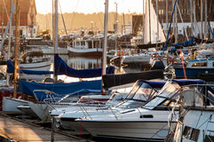 Yachts berthed in yacht harbor. Stock Photo