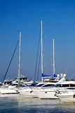 Yachts blancs sur un point d'attache Image stock