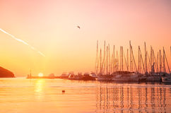 Yachts and boats at Adriatic sea bay at sunset. In golden and pink tones. Vrsar, Croatia, popular touristic destination Stock Image