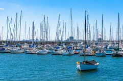 Yachts and boats on moorage. With cityscape view on the background Royalty Free Stock Photography