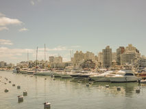 Yachts and Buildings in the port of Punta del Este. Buildings and yachts in a beautiful and tranquil sunny day at the port in Punta del Este, the most famous Royalty Free Stock Photos